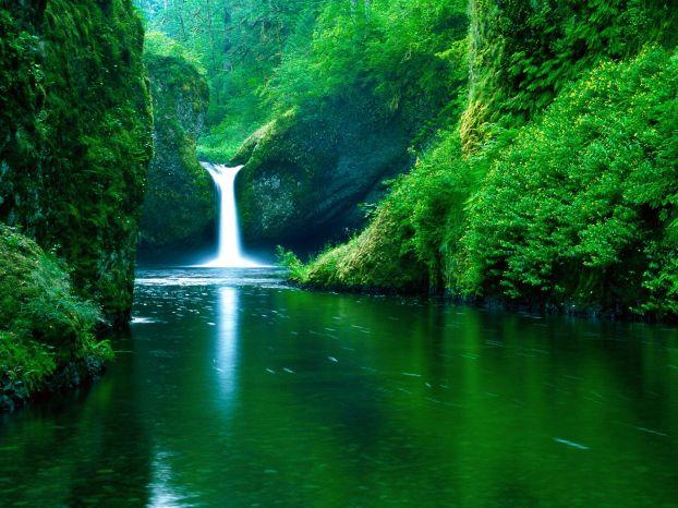 Зеленина и водопад горска пътека